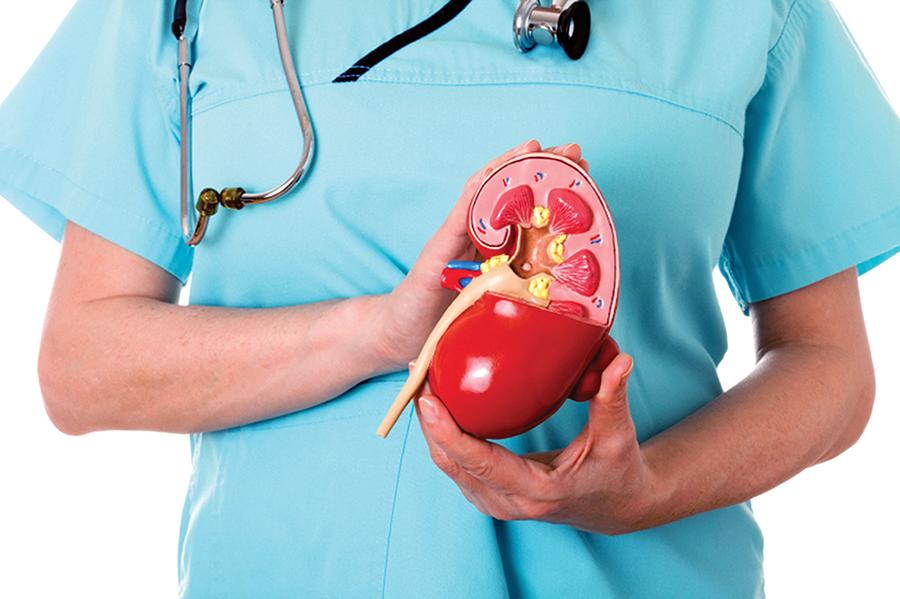 Hạ huyết áp dẫn đến suy thận